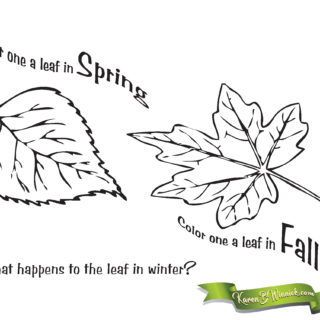 Seasonal Leaves Coloring Page